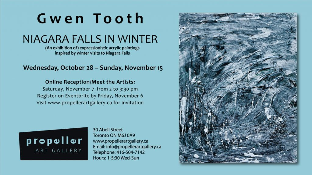 Gwen Tooth Niagara Falls in Winter