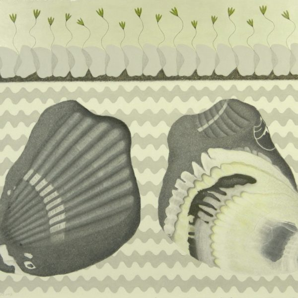 before and after 1 - shell rock, chalk pastel, graphite & acrylic, 22.5 x 30 inches (framed 27.5 x 35 inches)