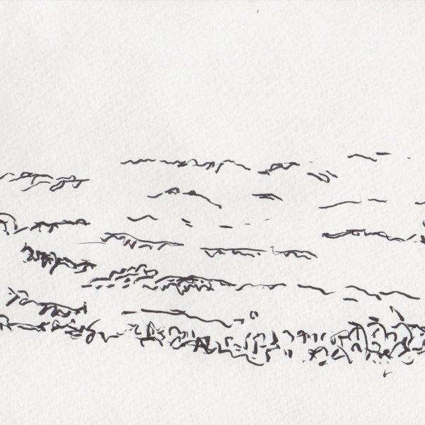 At Lake Ontario (October 11 2019), Ink drawing, 8.5 x 11 inches