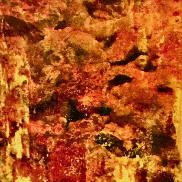 Petrified Forest Impression, 2020, Photo Transfers & Acrylic on Canvas, 10 x 8 inches