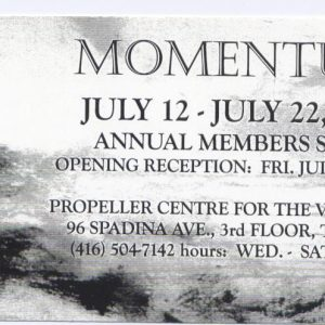 Momentum | Annual Members Show