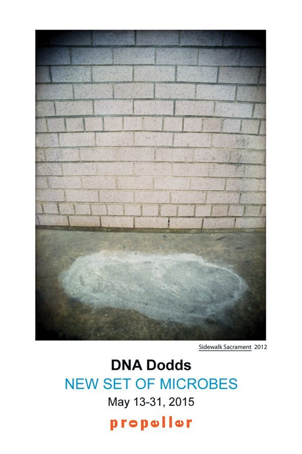 New Set of Microbes | DNA Dodds