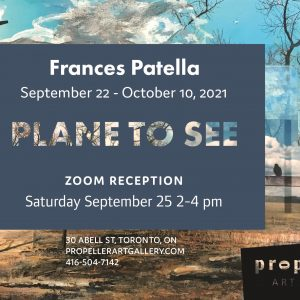 Plane To See | Frances Patella